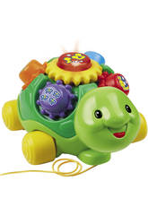 La tortuga colorina