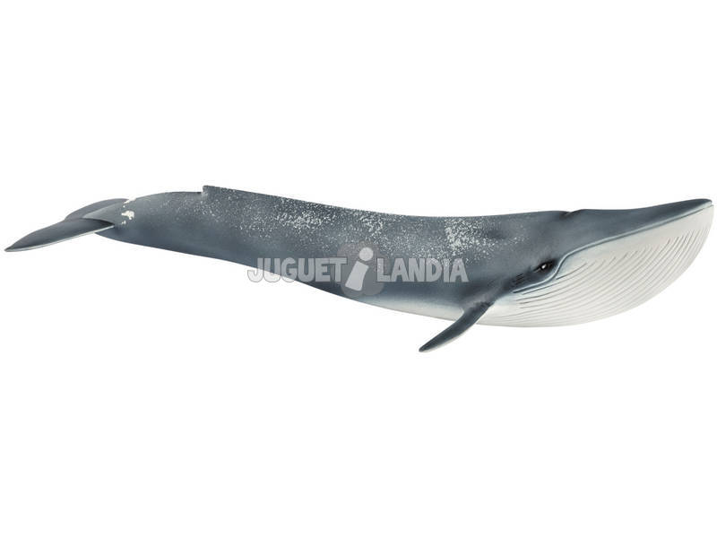 Baleia Azul Schleich 14806
