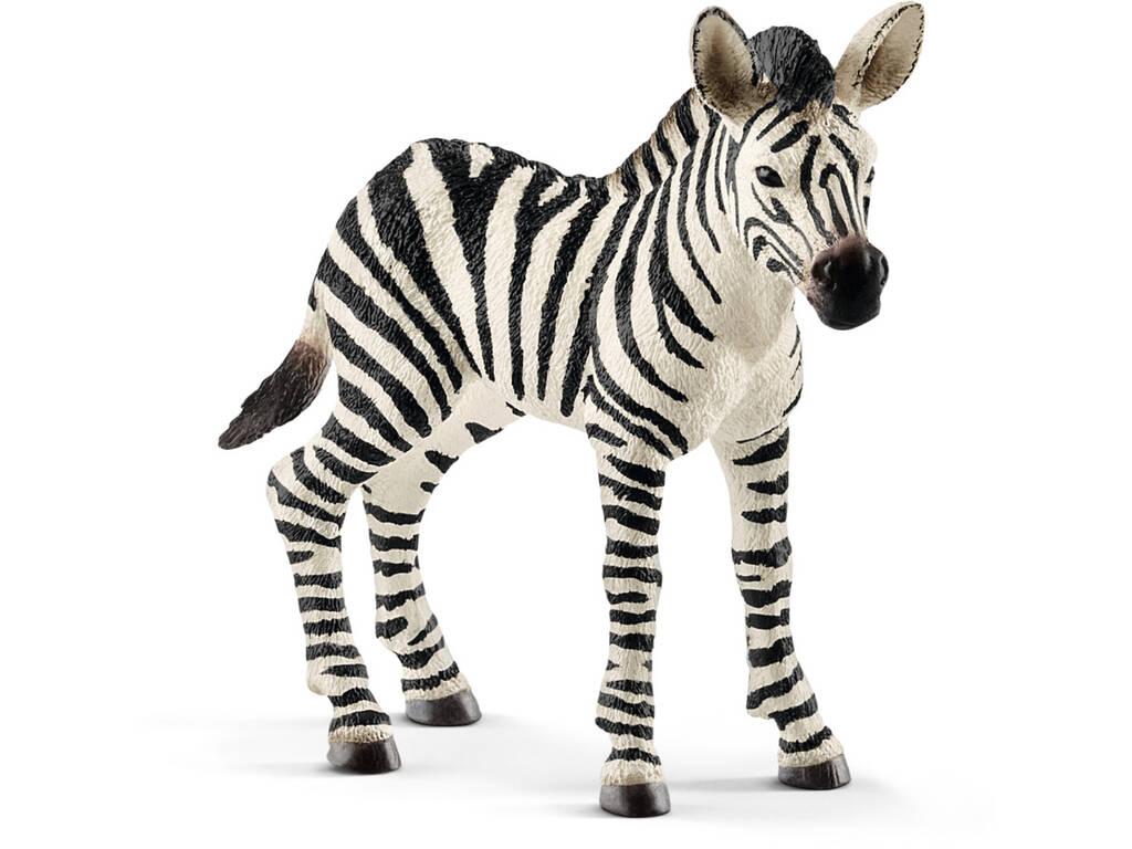 Cebra Potrillo Schleich 14811