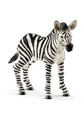 Zebra Fohlen Schleich 14811