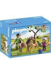Playmobil Veterinarian com pôneis 6949