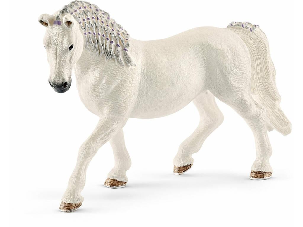 Égua Lipizana