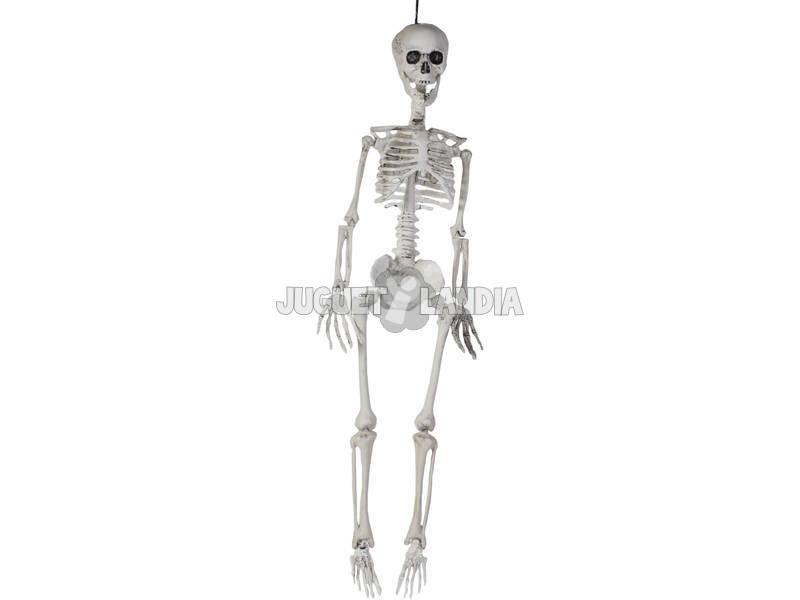 Esqueleto Articulado Pendurado 90cm