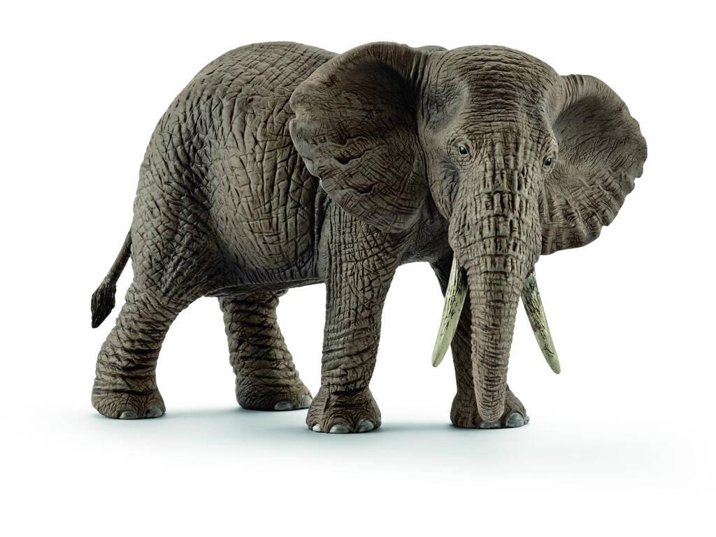 Elefante Africano Hembra Schleich 14761