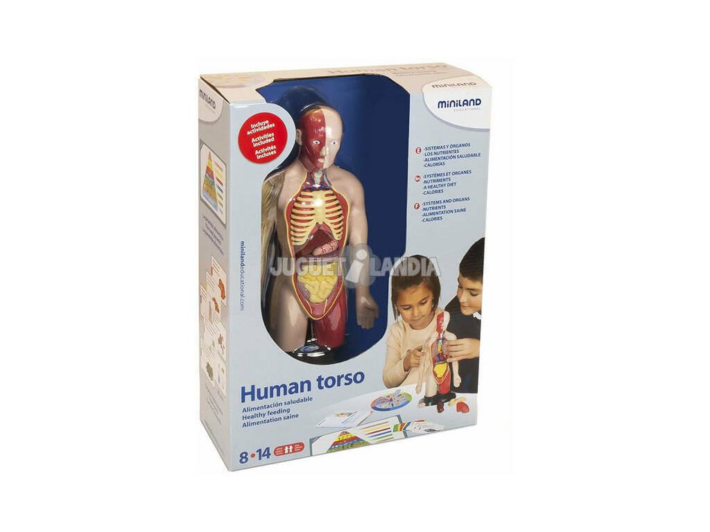 Tronco Humano Miniland 99113