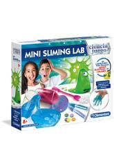 mini Sliming Lab