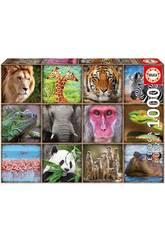Puzzle 1.000 Collage d'Animaux Sauvages Educa 17656