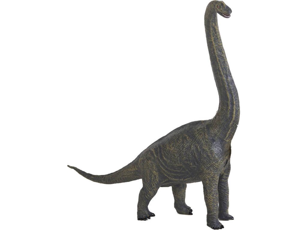 Diplodocus 55 cm.