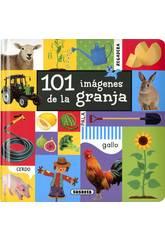 101 Imagens da Quinta Susaeta S5079002