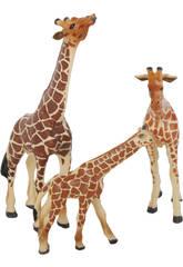 Girafes Set 3 Pièces
