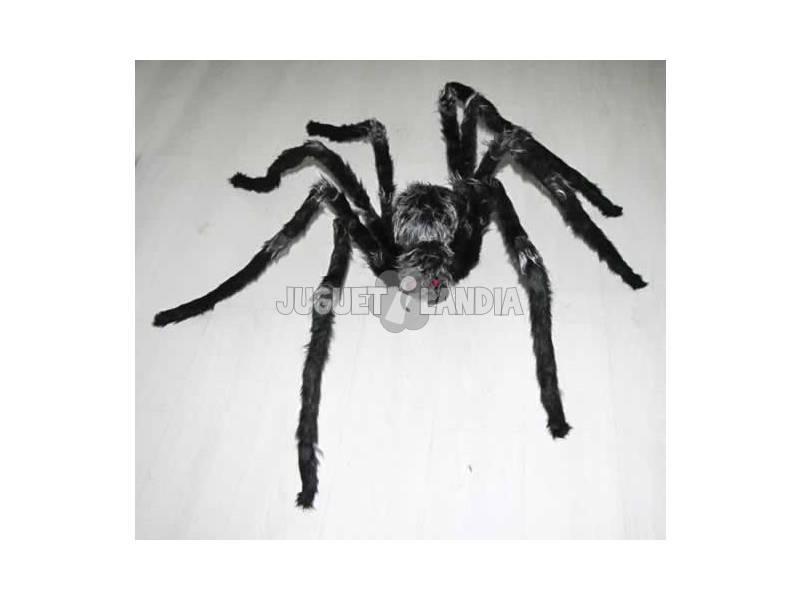 Araña Peluda Gigante Gris-Negra