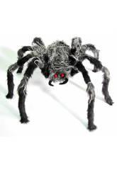 Araña Peluda Pequeña Gris-Negra