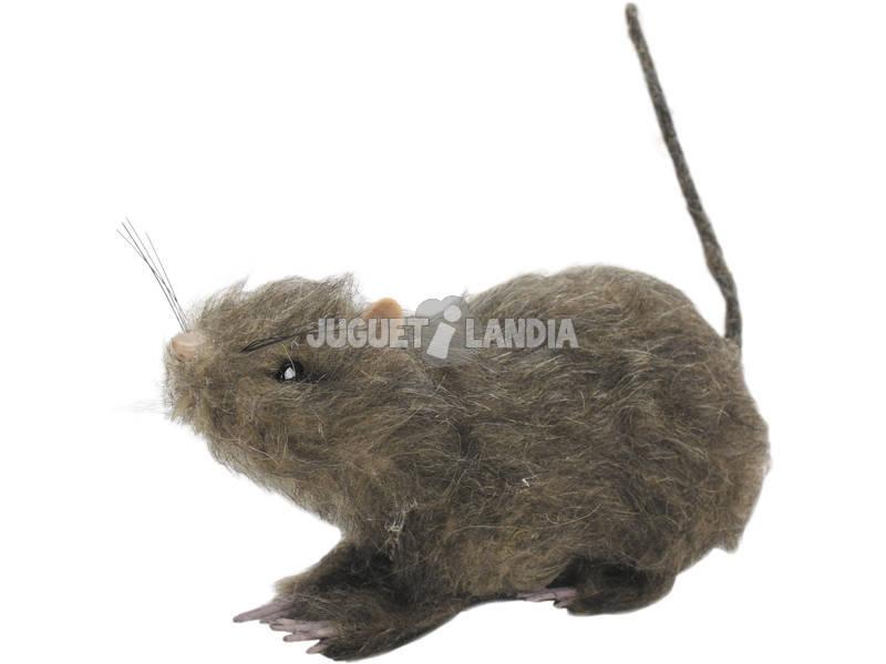 Rato Peluto Grande