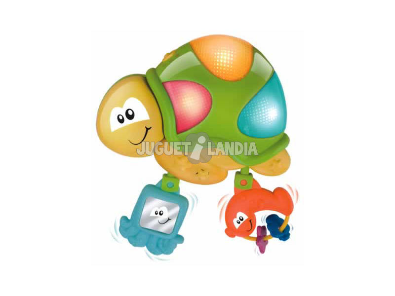 Tortue musicale