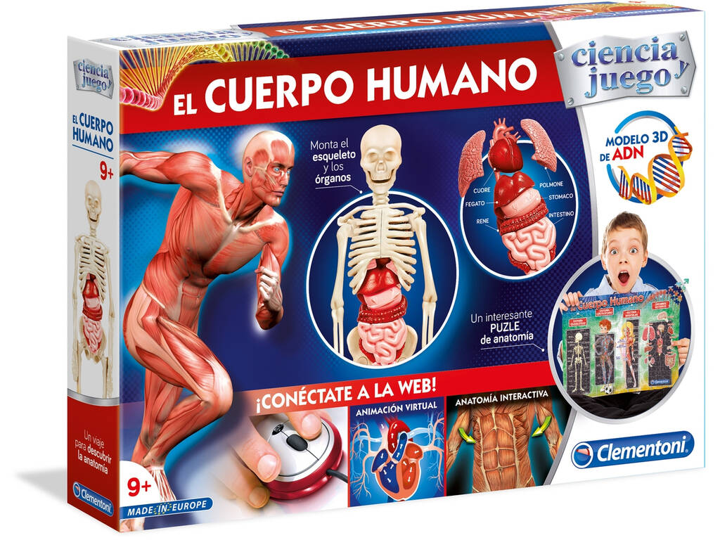 El Cuerpo Humano - Juguetilandia