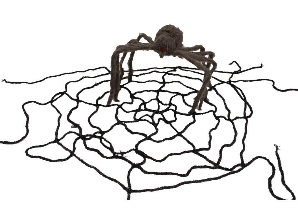 Teia de aranha com aranha peluda