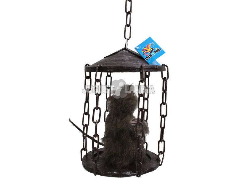 Cage avec Rat
