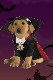 Imagenes De Ropa De Roblox Halloween Disfraces De Halloween Para Ninos Adultos Y Bebes Juguetilandia
