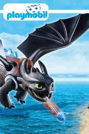 Wie man deinen Drachen trainieren